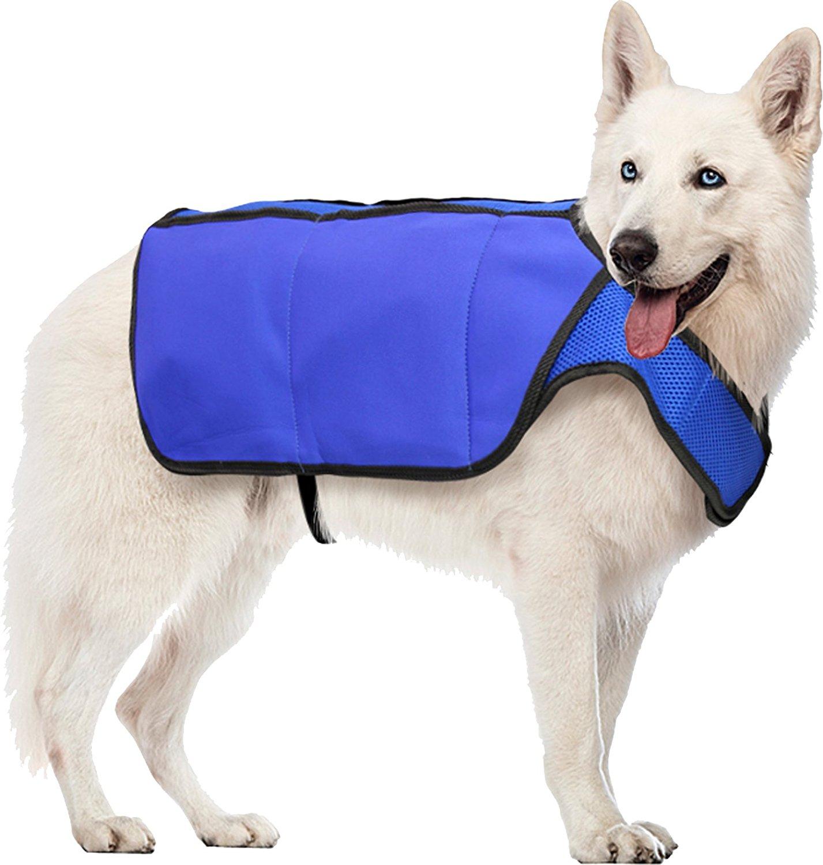 Cooling Coats - Cool Idea or Wet Flop? - Lottie's School for