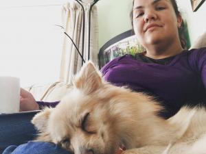pomeranian, Japanese Spitz dog trainer, sheffield, puppy