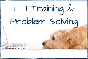 https://www.lottiesdogs.co.uk/1-1-training-behaviour/