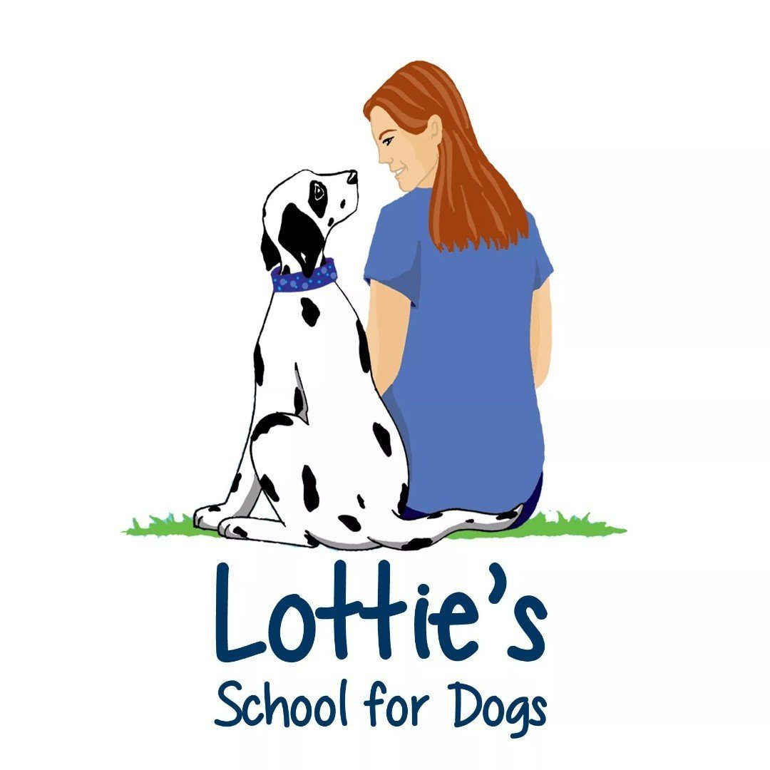Lottie's School for Dogs